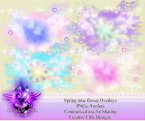 CCD-Spring Time Floral Overlays