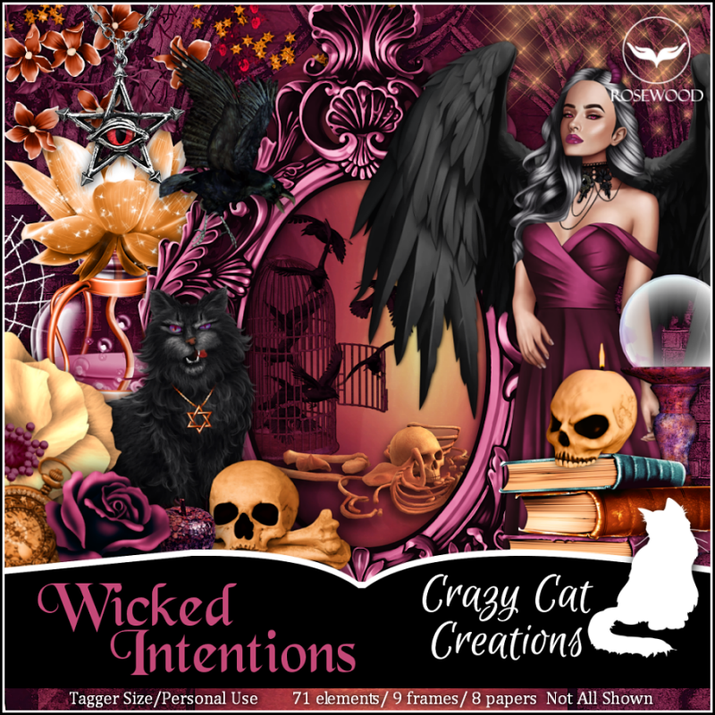 CCC_Wicked Intentions PU