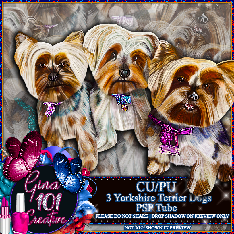 CU/PU 3 Yorkshire Terrier Dogs PSP Tube
